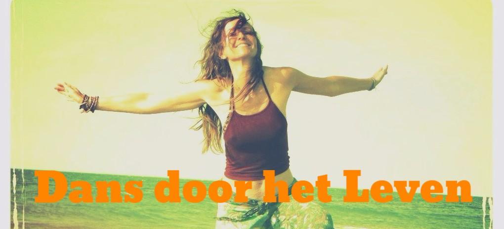 Dans door het Leven